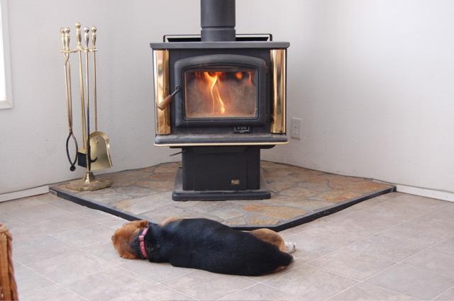 Widget in front of wood stove