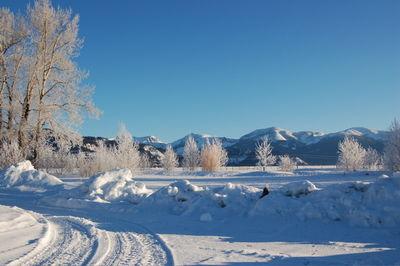 Winter scene 1 Feb 8
