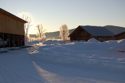 Winter scene 4 Feb 8