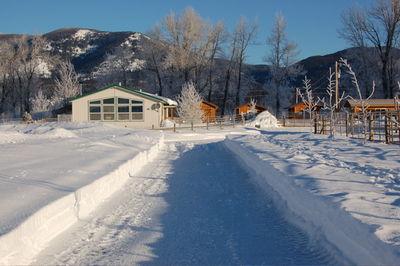 Winter scene 3 Feb 8