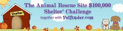 Shelter Challenge_468x120