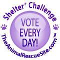 Shelter Challenge Logo