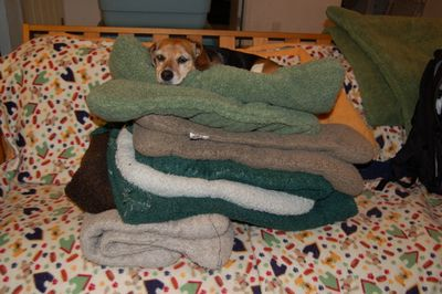 Widget on pile of beds