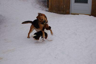 Libby and Austin 1