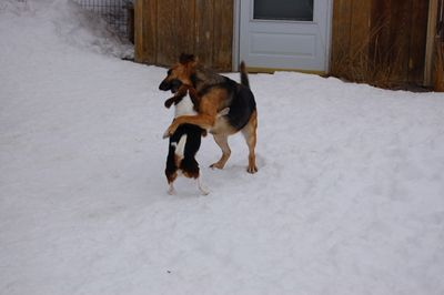 Libby and Austin 3