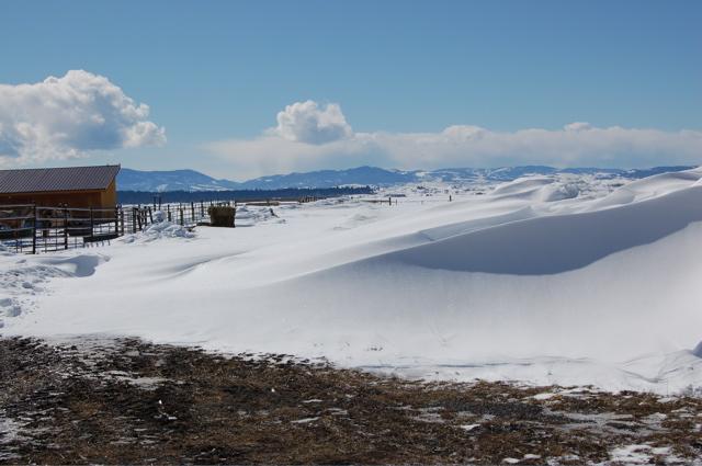 Snowdrift 3