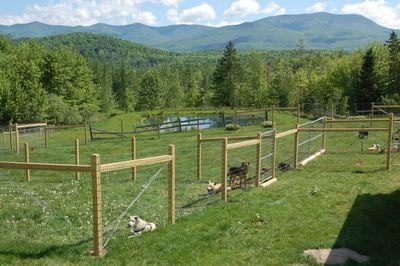Dog yards Lancaster