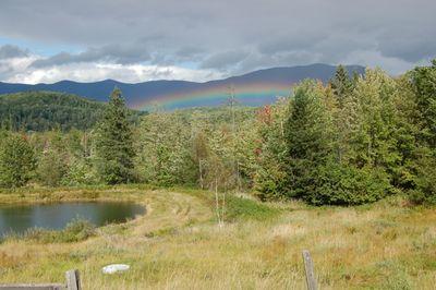 Rainbow over pond