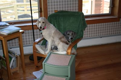 Molly and Pris in chair 5