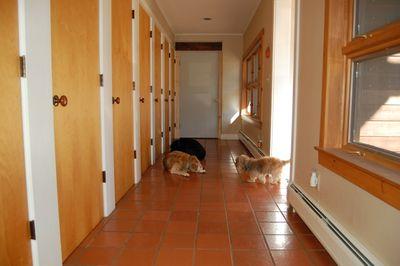Hallway with Fuzzy