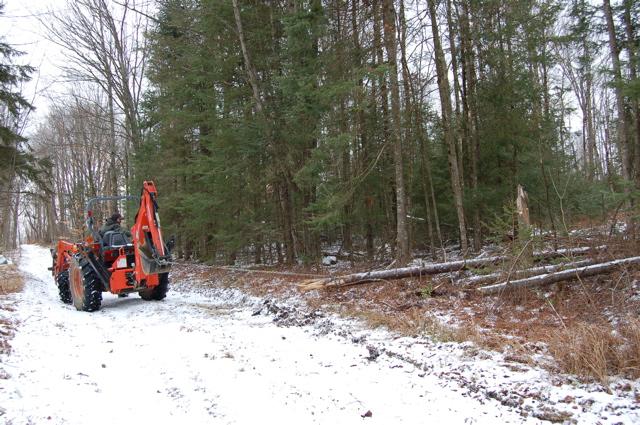 Logging 1