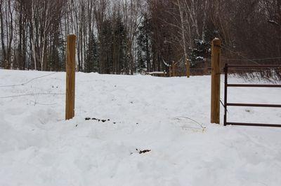 Lena fence 1