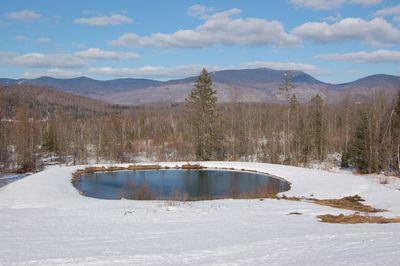 Pond March 19
