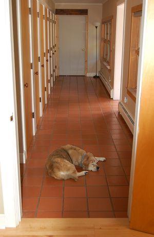 Madison in hallway