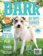 Cover_June_Aug_Bark65_144x186