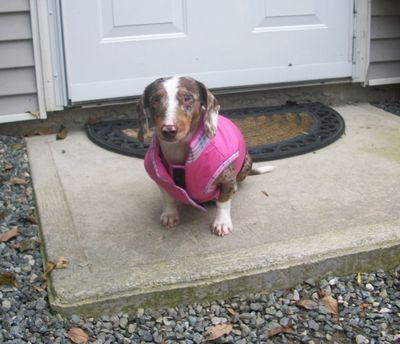 Lucy in pink coat