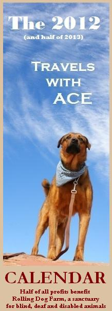 Travels with Ace