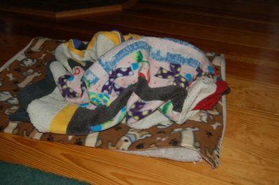 Wilbur blanket 1