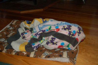 Wilbur blanket 3