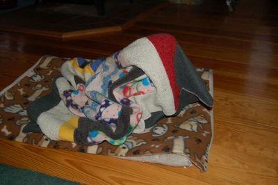 Wilbur blanket 7