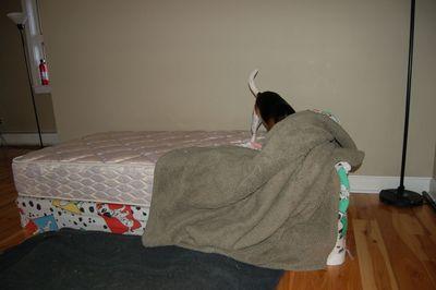 Owen bed 6