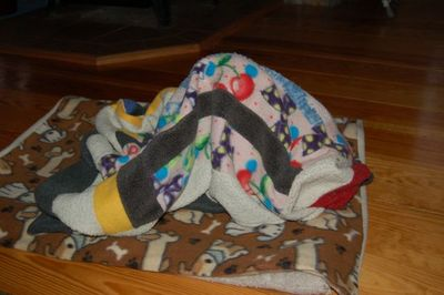 Wilbur blanket 2
