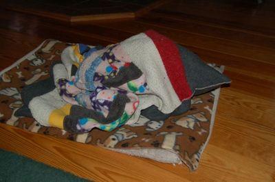 Wilbur blanket 9