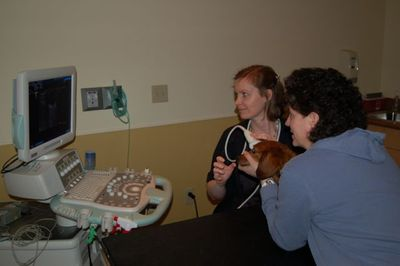 Max with eye ultrasound