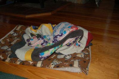 Wilbur blanket 4