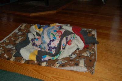 Wilbur blanket 5