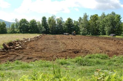 Field clearing 1