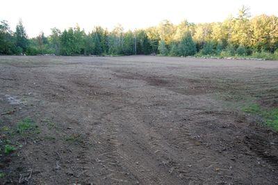 New field 1