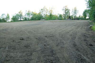 New field 2