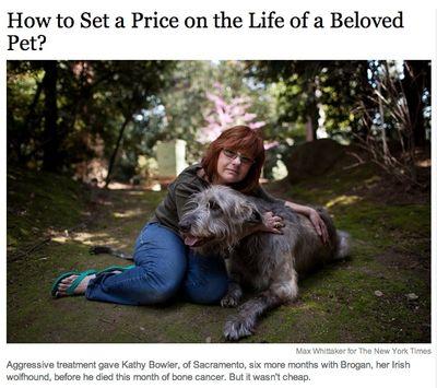 NYT on Pet Euthanasia
