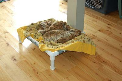 Madison bed 1