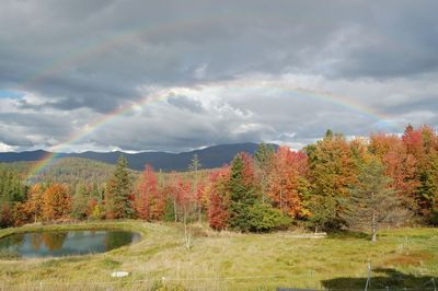 Rainbow over fall trees