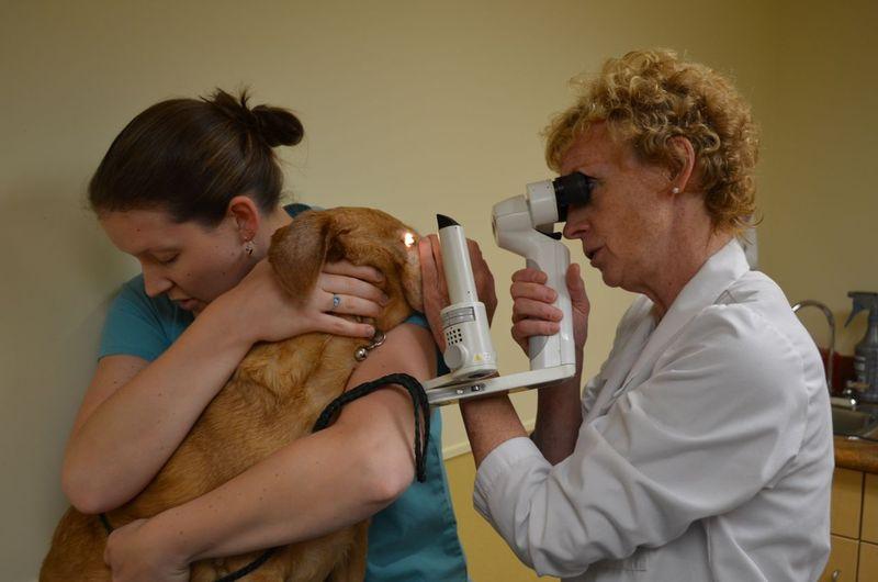 Darla with Dr Jamieson