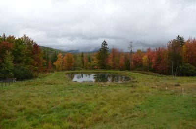 Fall colors at pond