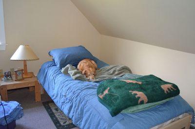 Darla in bedroom
