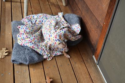 Wilbur as blanket