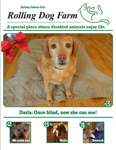 Winter Newsletter Cover with Darla
