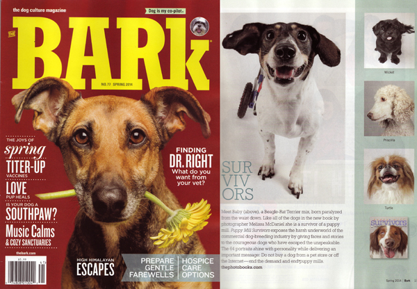 Bark cover on puppy mill book
