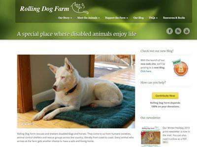 RDF Website home page screenshot