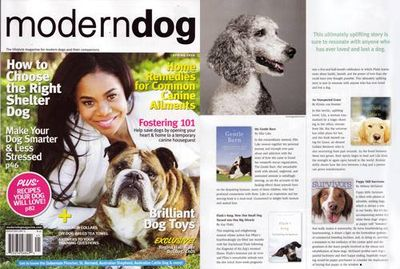 Modern Dog cover on puppy mill book